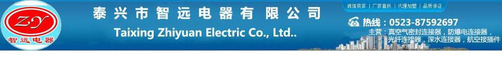 泰兴市智远电器有限公司